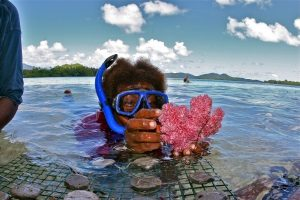 A diver from the Solomon Islands harvesting a small amount of coral
